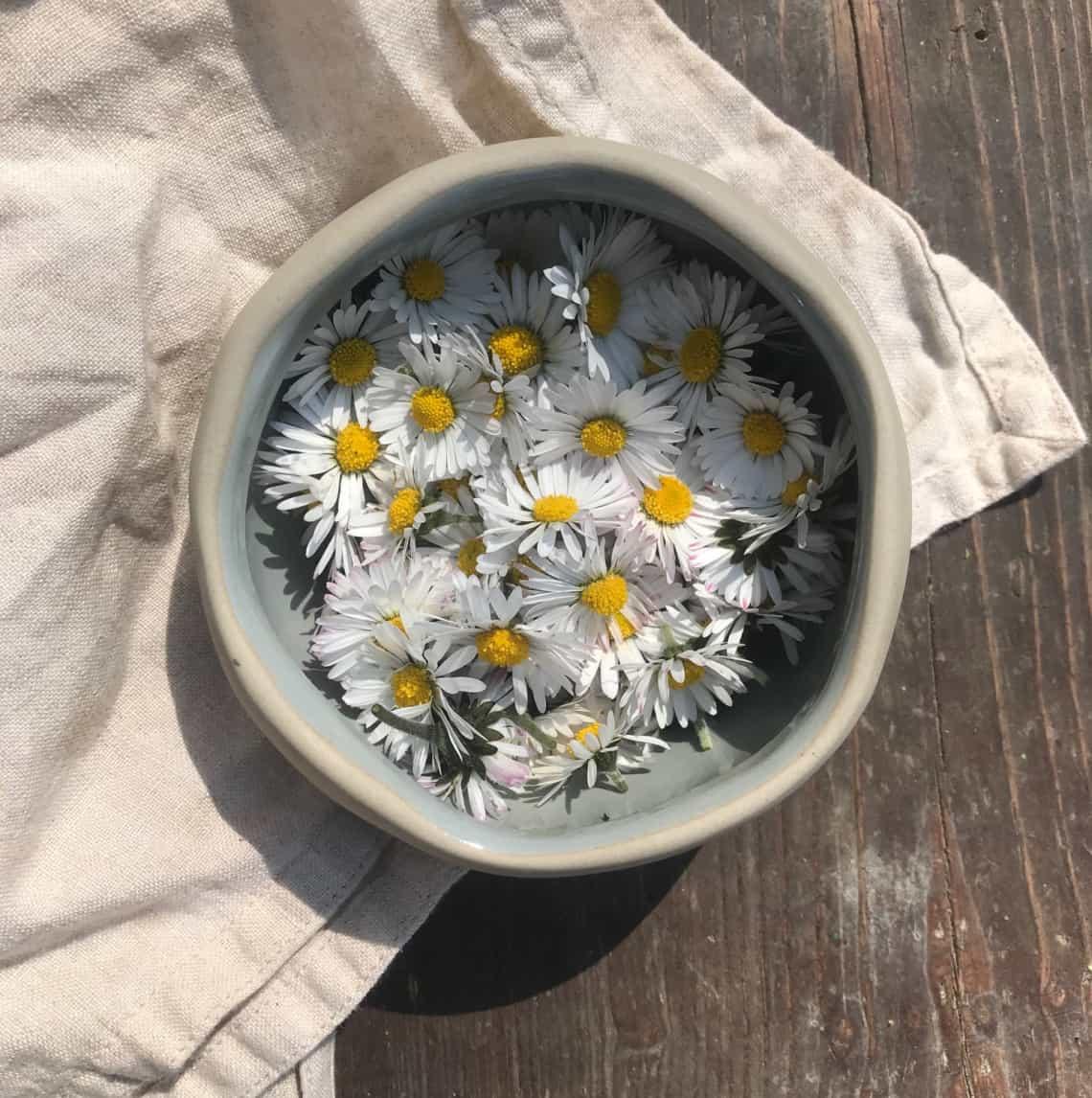 8 Lợi ích bất ngờ của hoa cúc đối với làn da của bạn